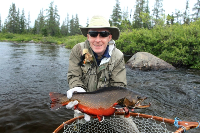 Brook Trout (Labrador Red)