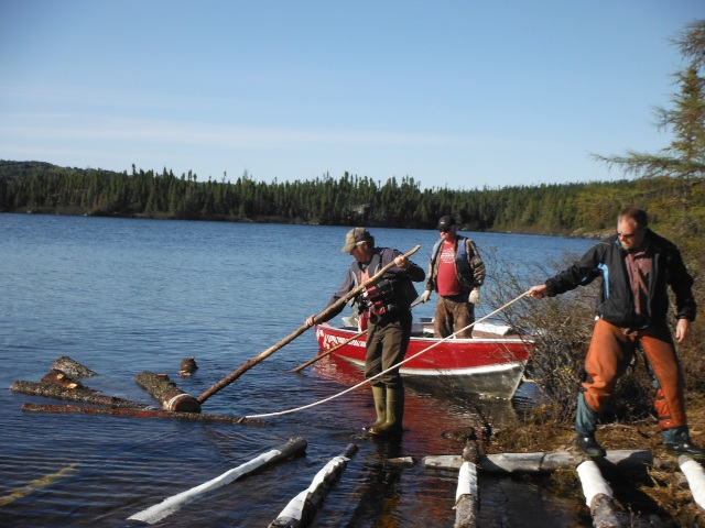 Ron, Byron and Anthony Drag Logs from the Forest to the Mill